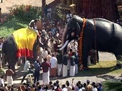 M V Shankaran With His Pet Elephant At Home In Kerala Photographs By Hemant Mishra