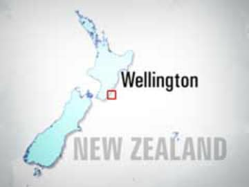 Skydivers Safe After New Zealand Plane Crashes Into Lake