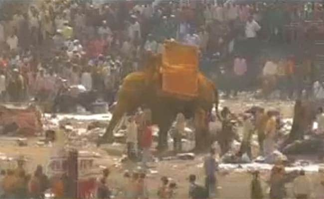 Temple Elephant Goes Berserk in Maharashtra, One Killed