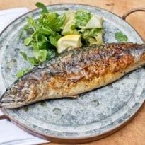 Angela Hartnett's Chargrilled Mackerel With Pickled Cucumber Recipe