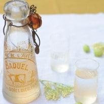 Make Your Own Elderflower and Gooseberry Cordial