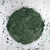 Edible Algae - the New Super-Food?