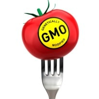 Battle over GMO labeling rumbling in United States