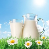 Vegetable 'Milk' for Lactose Intolerance