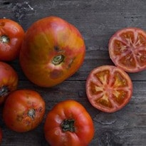 How to grow your own tomatoes | Make your own