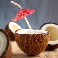 India's biggest coconut & cashew festival in Goa