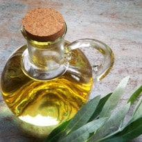 Olive, Sunflower or Canola - Which Oil is Healthier?