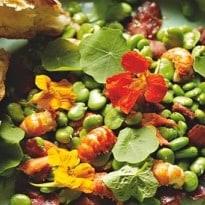 Full of Beans: Mary-Ellen McTague's Fresh Broad Bean Recipes