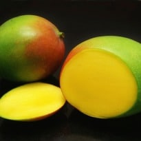 European Union May Lift Ban On Import of Indian Mangoes