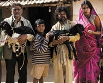 Peepli Live to be screened at IFFI
