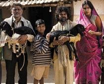 Peepli Live team to praise Narmada Dam project