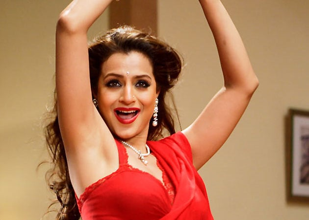 Ameesha Patel has a busy year ahead
