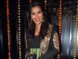 Sophie Choudry wants to revive pop music in India