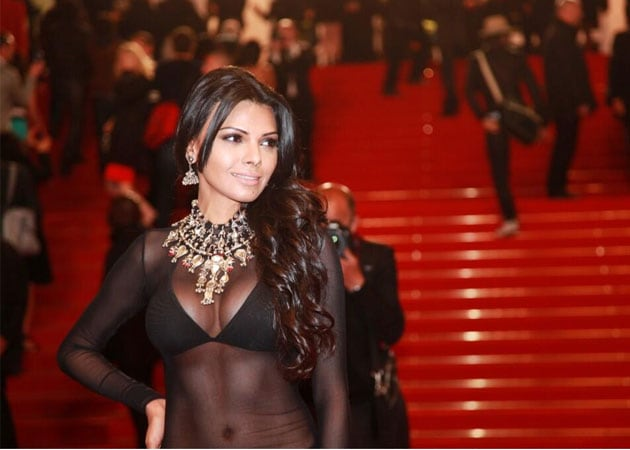 Sherlyn Chopra wears transparent dress to Cannes red carpet