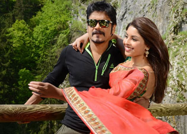 Nagarjuna's Bhai slumps at the box-office