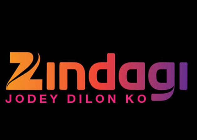 Indo-Pak Artists Collaborate on Series of Television Serials