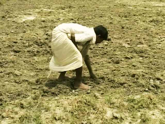 Video : Bihar government declares drought in 33 of 38 districts