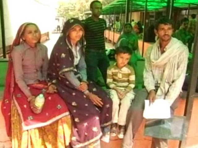 Video : Rajasthan's season of plenty