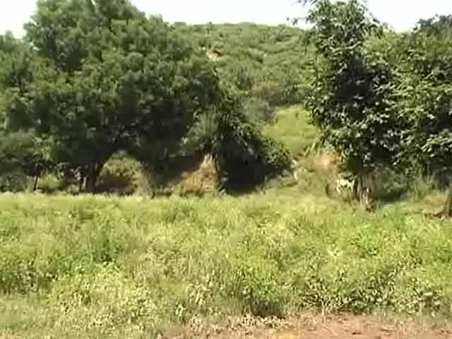 Video : Property hunt reaches Aravallis