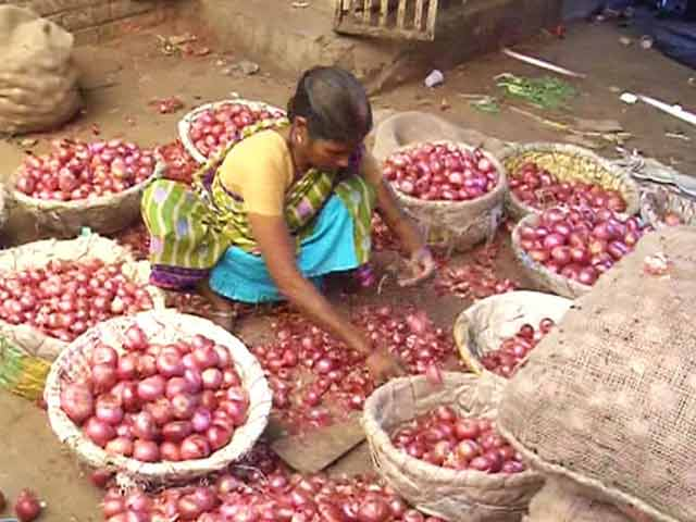 Video : Onion prices to fall in 2-3 weeks: Agriculture Minister Sharad Pawar