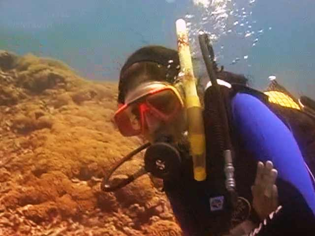 Video : Underwater: The hidden truth (Aired: June 2008)