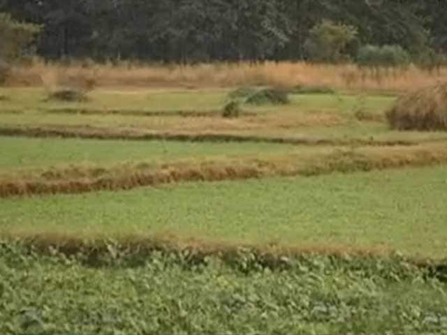 Agricultural Land: Latest News, Photos, Videos on Agricultural Land