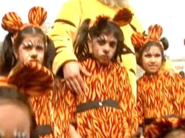 Video : 'Kids for tigers' event held at Delhi school