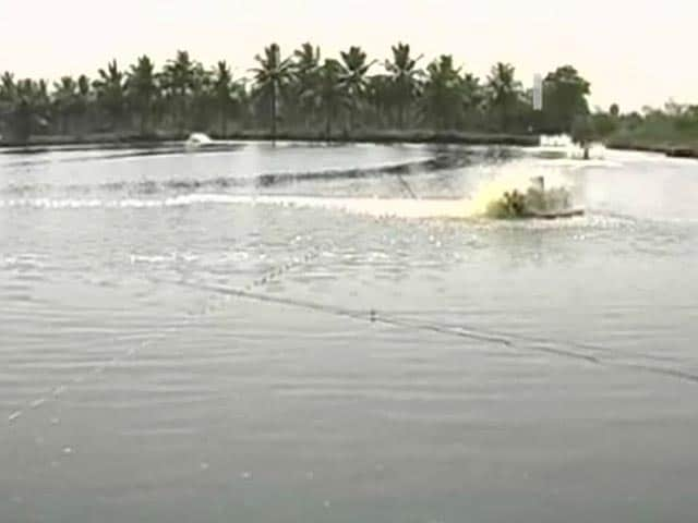 Video : Why aqua industry is happy over division of Andhra Pradesh