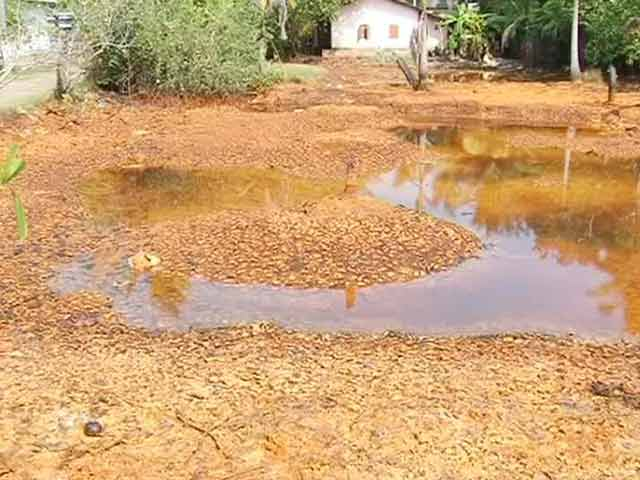 Video : Kerala toxic hazard: government steps in, acquires affected land