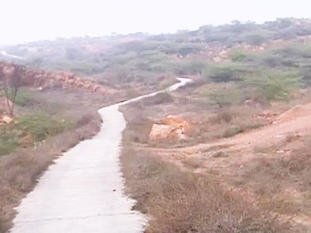 Video : In Gurgaon, a refuge from the city's hustle bustle