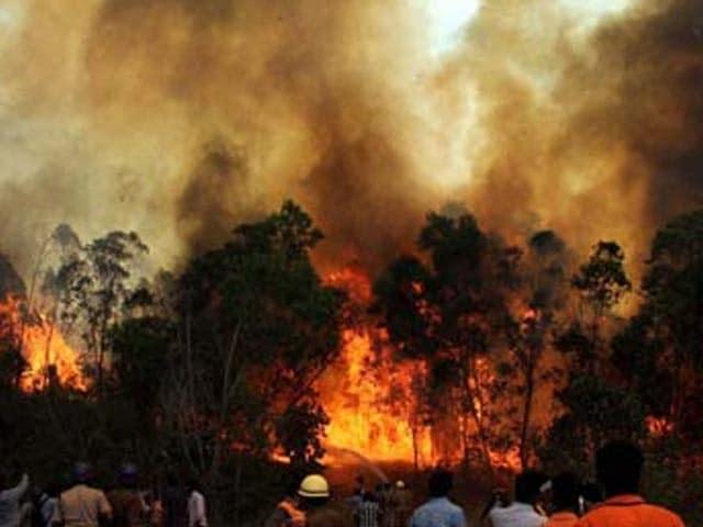 Video : Reports of new fire in hills near Tirumala temple