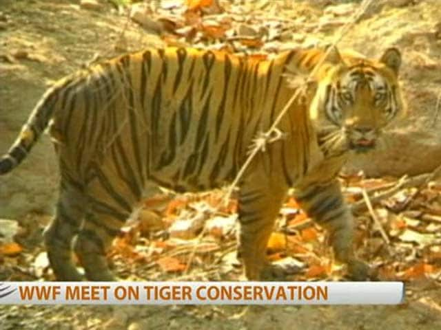 Video : WWF meet on tiger conservation