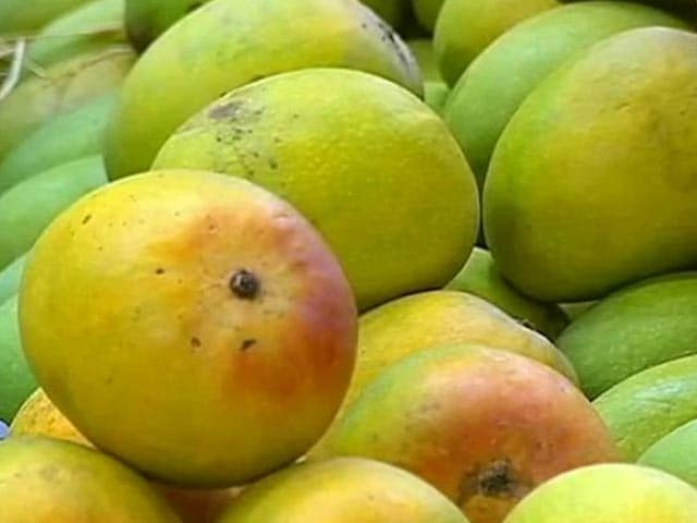 Video : European Union ban on Alphonso mangoes unfortunate: FICCI