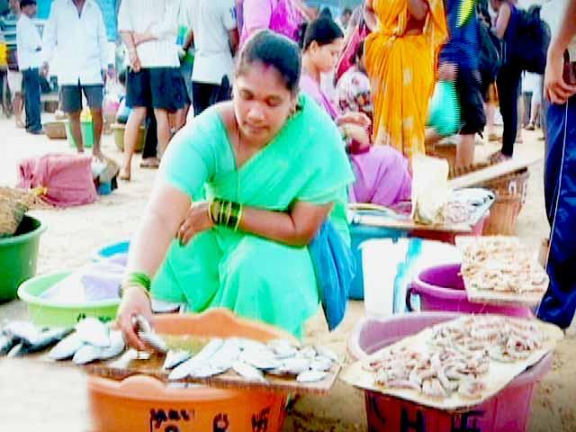 Video : Maachli Homestay - An Authentic Farm Stay in Parule, a Konkan Village