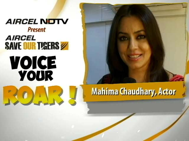Video : Mahima Chowdhary Asks You to Fight for the Tiger