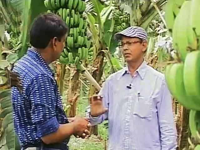 Videos : एक किसान बदल रहा है तकदीर