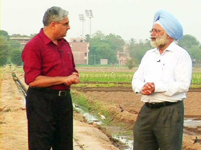 Video : 'Drought to Have No Impact on Crop Yields in Punjab'