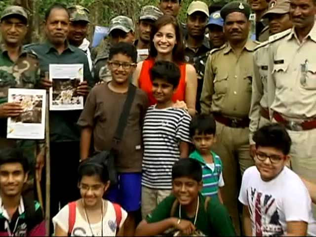 Video : Mowgli's Land: The <i>Kids For Tigers</i> Special, Featuring Dia Mirza