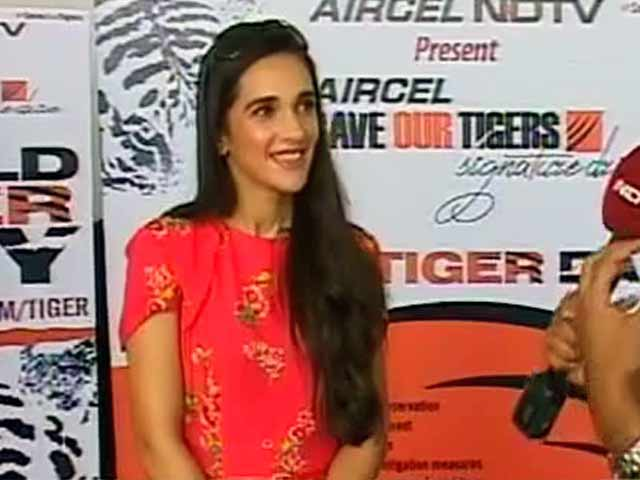 Video : Nation Roars In Support for the Tiger