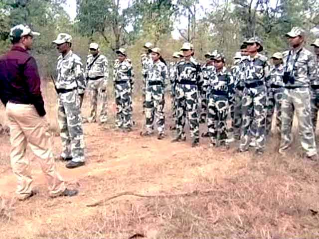 Video : In Maharashtra Tiger Reserve, Zero Poaching, Thanks to a Special Force