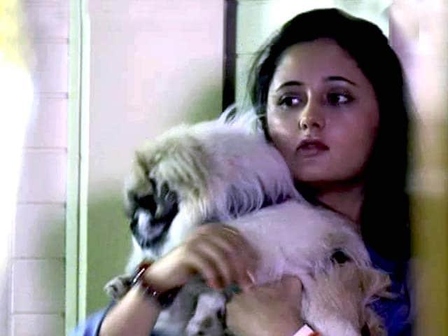 Video : The Television Star Rashami Desai and Her Animal World