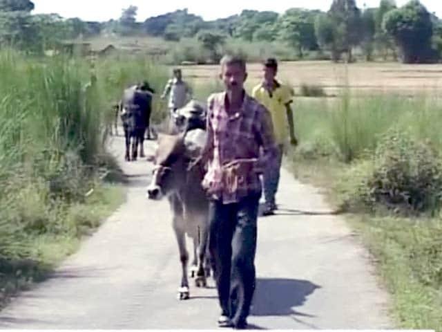 Video : घर छोड़ने को मजबूर चलियारी गांव के लोग