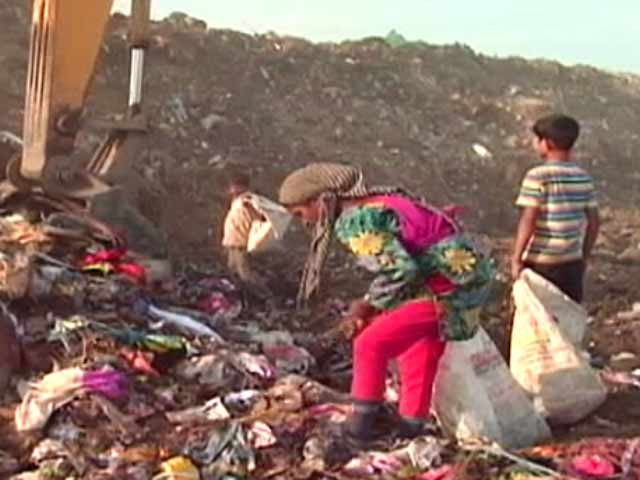 Video : India's Ragpickers - The Harsh Reality