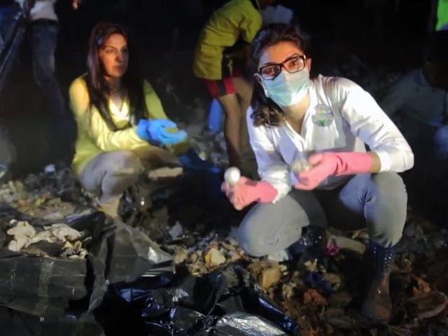 Swachh Bharat: Priyanka Spruces Up Neighbourhood, Tags NDTV Team