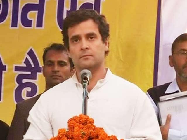 Video : In Amethi Village He Adopted, Rahul Gandhi Suggests it's Pointless