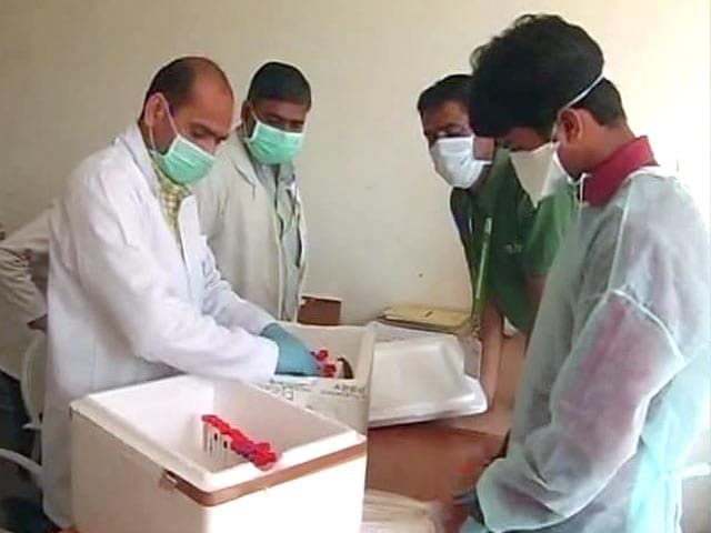 Video : 8 People Dying of Swine Flu Every Day, Says Rajasthan Government