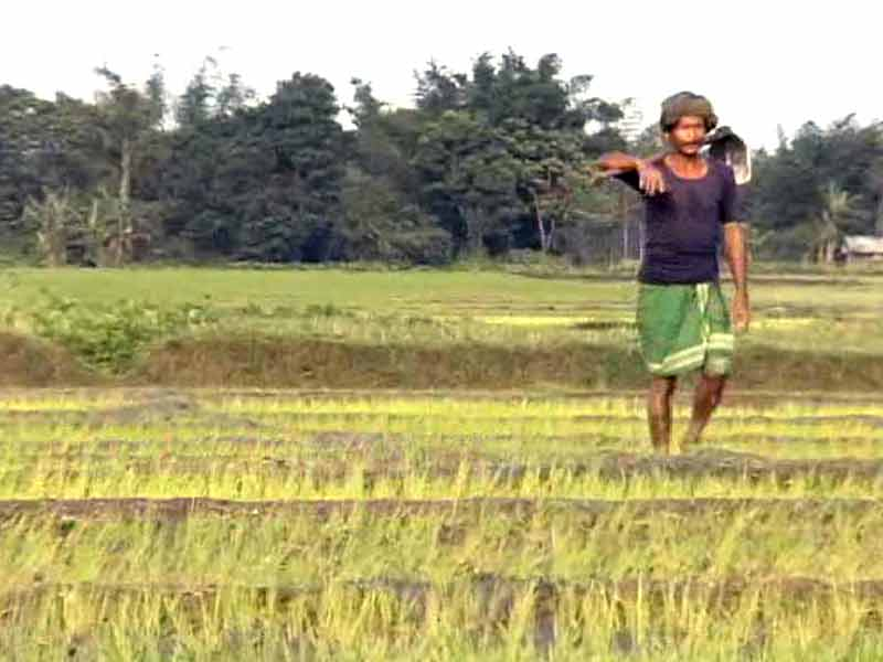 Video : BJP Guilty of Doublespeak on Compensation to Farmers Under the Land Acquisition Ordinance?