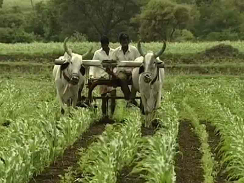 Video : Budget 2016: Stress On Farmers, Poor As Government Preps For Poll Season