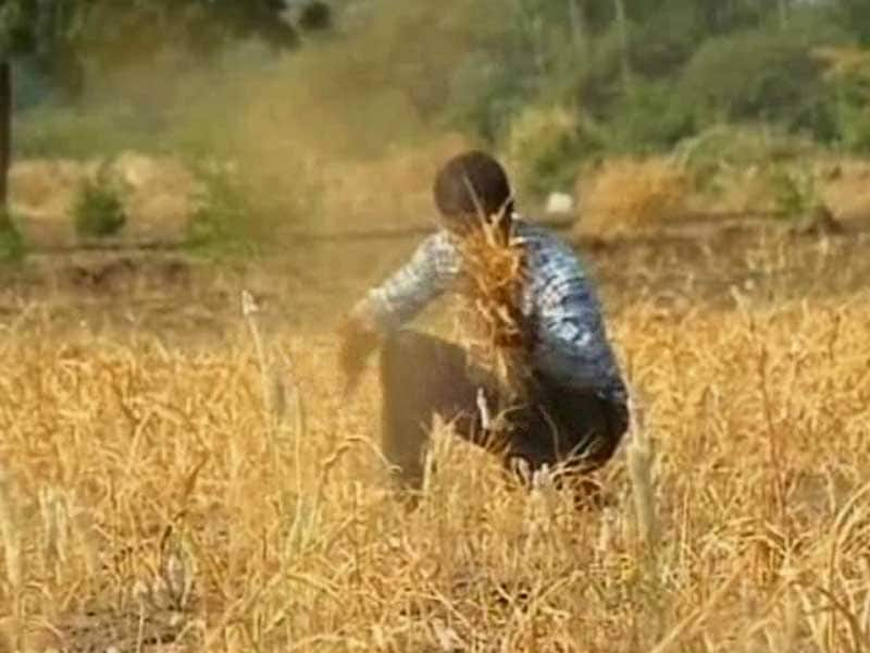 Video : 67 Per Cent Farmers in Maharashtra's Yavatmal District Suffer from Depression: Survey