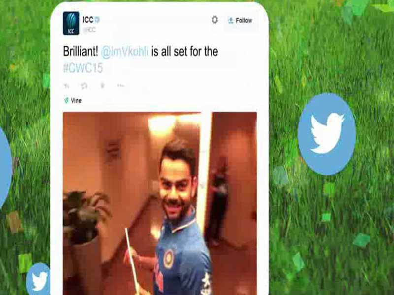 Video : The Best of Cricket World Cup 2015 on Twitter